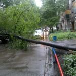 cyclone (5)