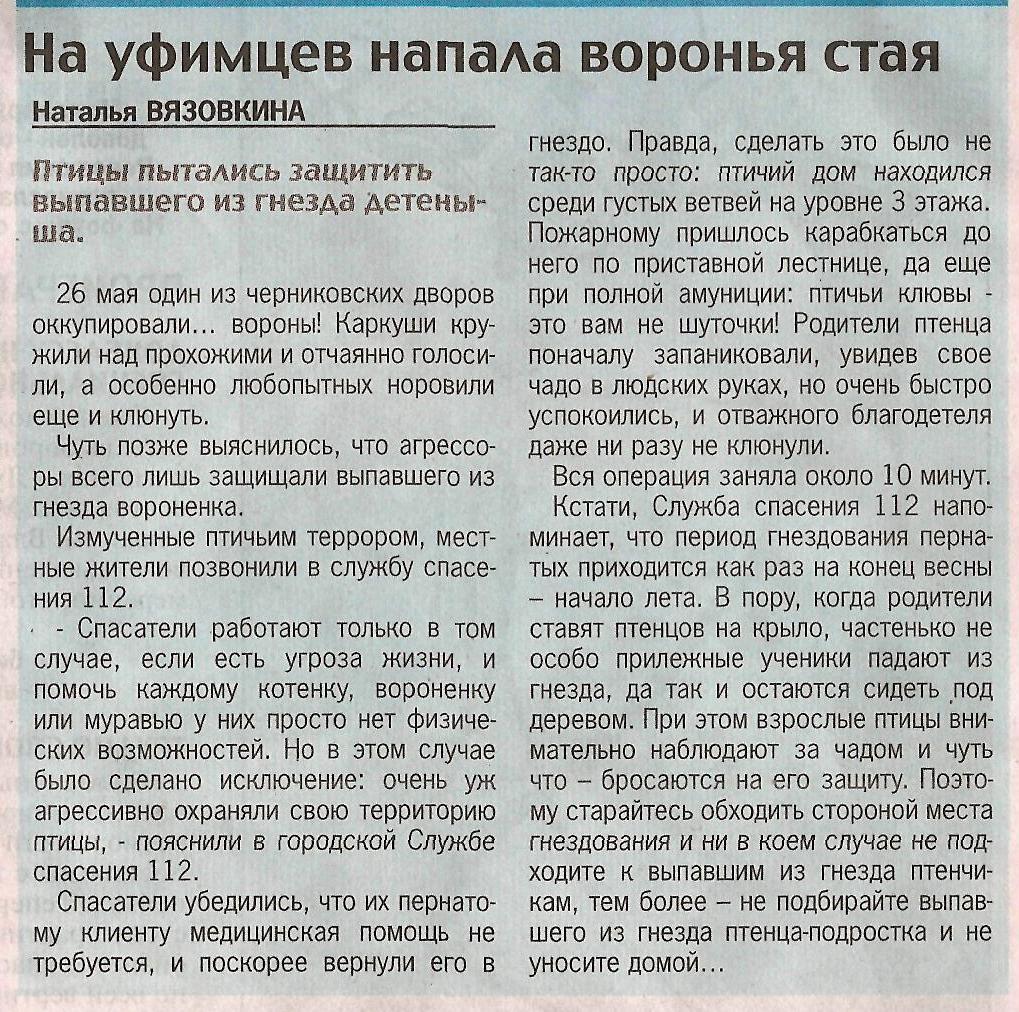 Комсомольская правда 28-29.05.14 На уфимцев напала воронья стая
